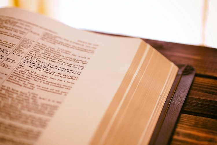 bible image